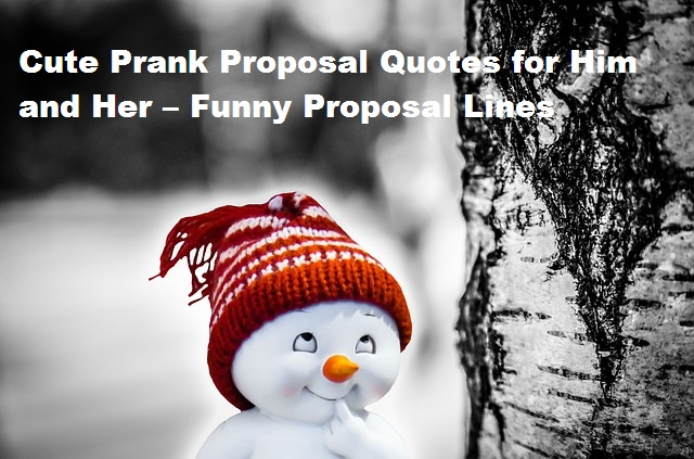 Cute Prank Proposal Quotes for Him and Her – Funny Proposal Lines