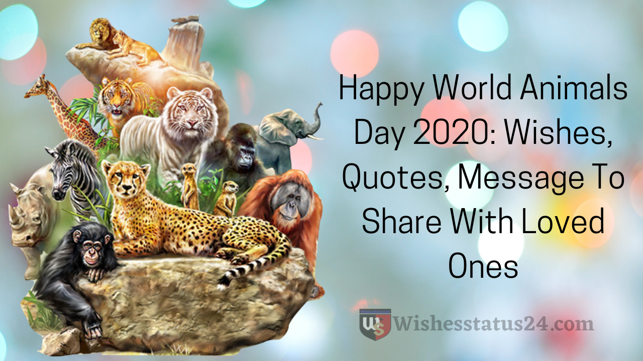 Happy World Animals Day 2020: Wishes, Quotes, Message To Share With Loved Ones