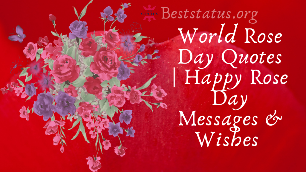 World Rose day quotes for love, Wishes, Message & Images, Shayari
