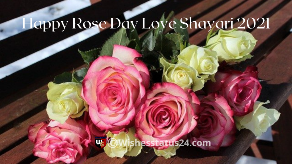 Happy Rose Day Wishes For Wife, Husband, Quotes & Pics