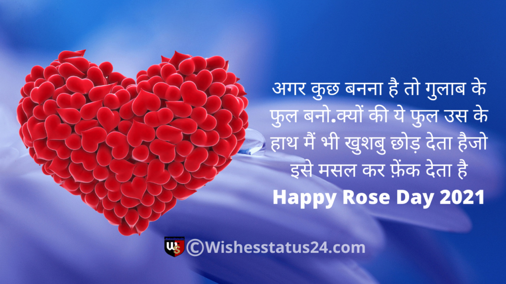 world rose day