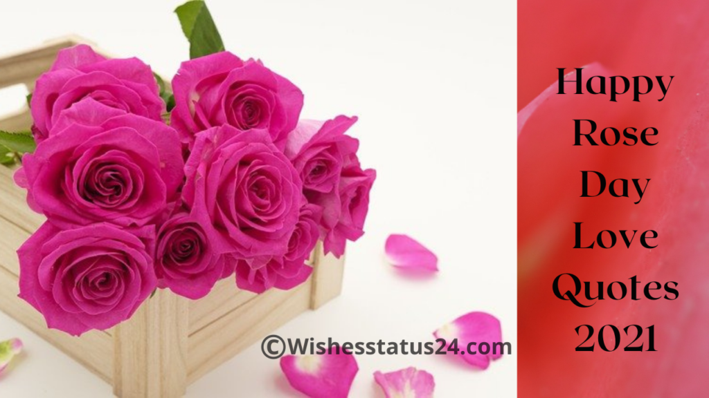 Happy Rose Day Wishes For Husband & Wife, Images, Pics, Shayari