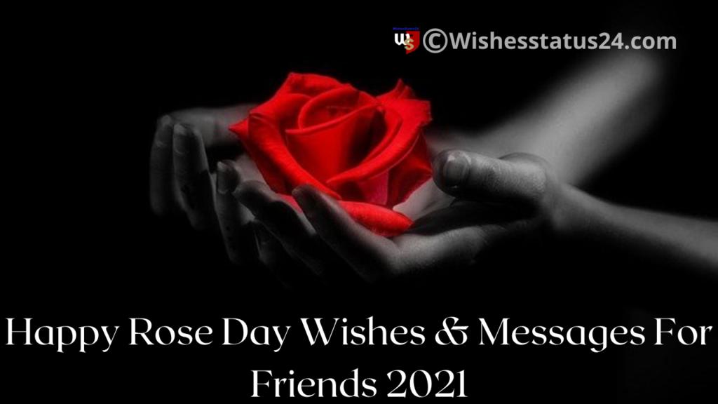 Happy Rose Day Wishes For Best Friend & GF And BF