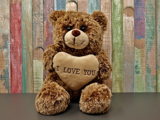 Best teddy day images for friends