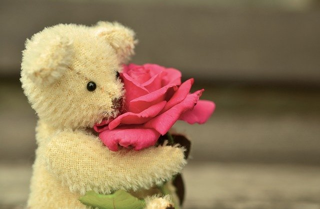 Teddy day wishes for husband