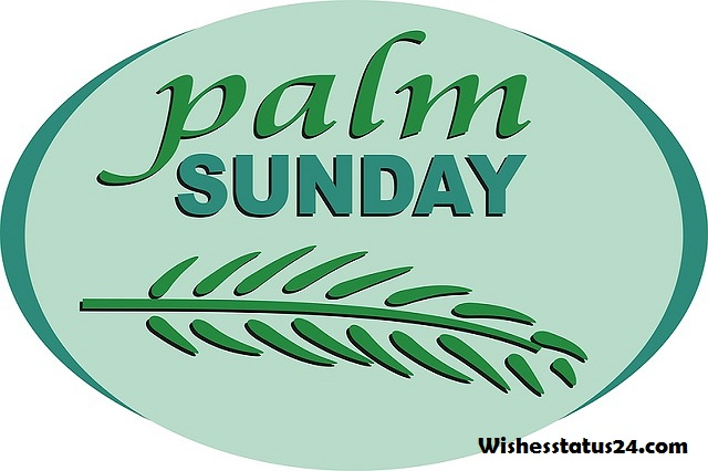 happy palm sunday and holy week