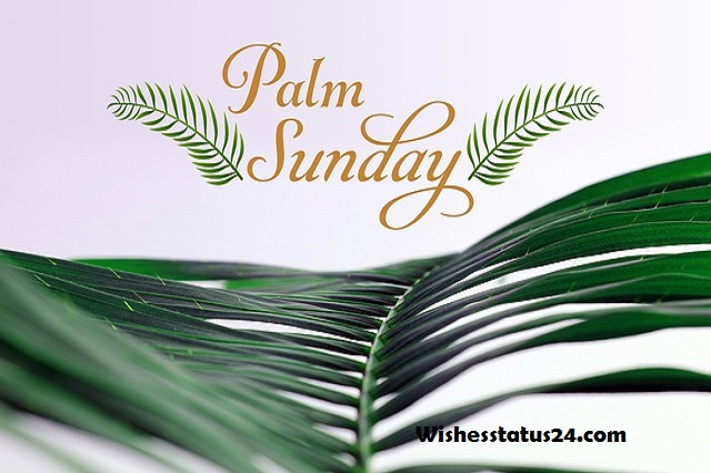 Palm Sunday Blessings Quotes, Wishes, And Messages 2021