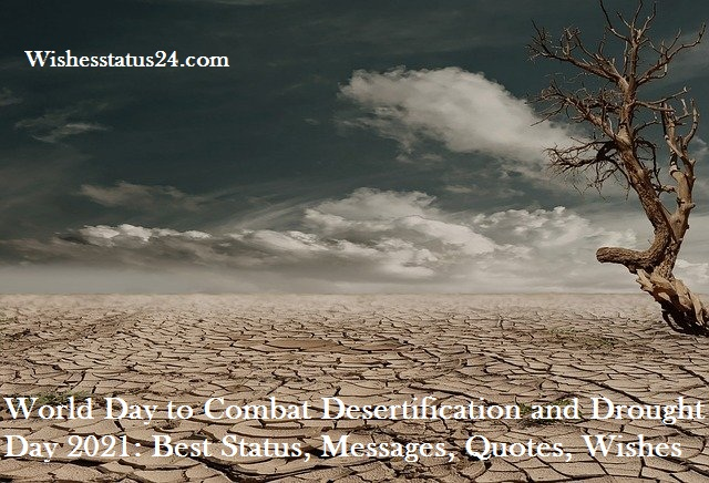 World Day to Combat Desertification and Drought Day 2021: Best Status, Messages, Quotes, Wishes